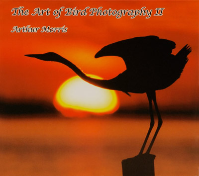 photography pictures. of Digital Photography and