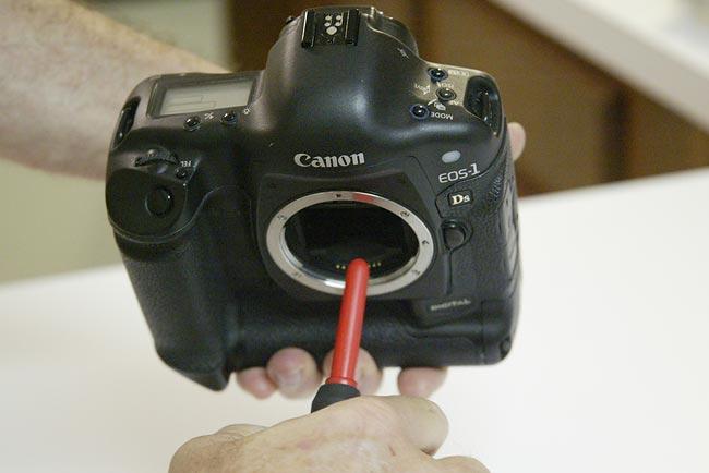 Camera Rocket Blower : Birds as art bulletin 134